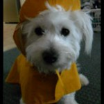 Abbie and her raincoat