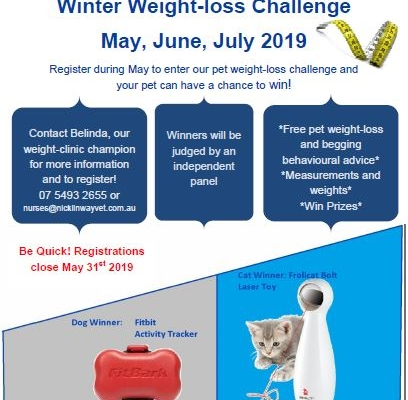 Winter Weight Loss Challenge