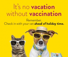 Vaccination Promotion