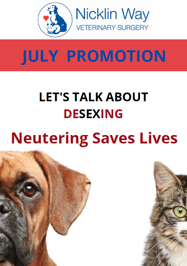 July 2021 Promotion - Desexing