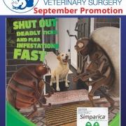 September 2021 Promotion